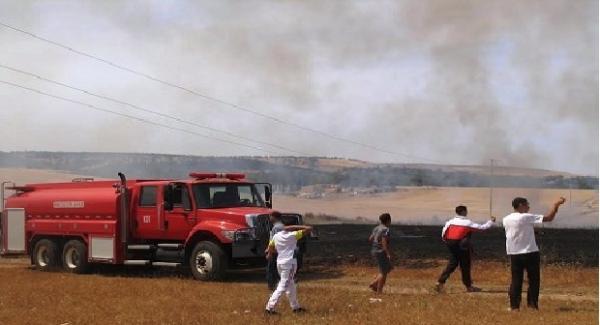 عاجل : حريق مهول يأتي على 50 هكتارا من الشعير