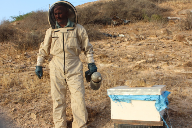 روبورطاج:فلاح يكشف لناظور24 عن تفاصيل كيفية تربية النحل