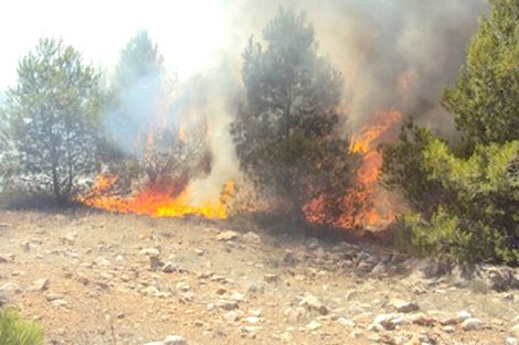 الحسيمة..حريق يأتي على حوالي 4 هكتارات من غابة بوسكور
