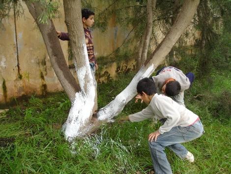جمعية النسيم ببني بوعياش تحتفل باليوم العالمي للغابة