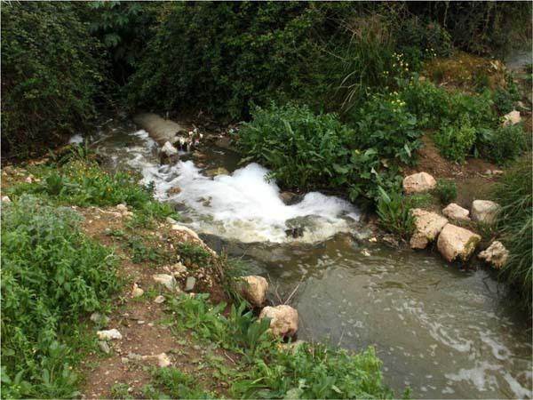 أكثر من 30 ألف من سكان مدينة ضواحي بركان، ممنوعون من استعمال الماء في الشرب والاغتسال والتنظيف
