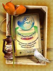 بيان حول موقف حركة المغاربة الديمقراطيين المقيمين بالخارج من الدستور المقترح.