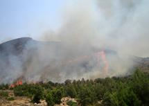السيطرة النهائية على الحريق المهول الذي شب بالمنتزه الوطني للحسيمة