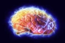 علماء : المخ يستطيع تجاهل المتحدثين غير المرغوب فيهم