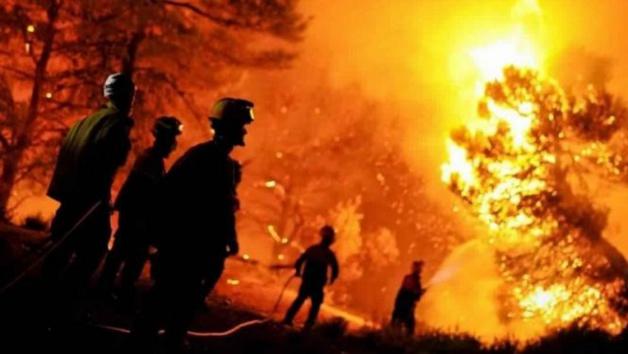 بتعليمات ملكية... المغرب مستعد لمساعدة الجزائر في مكافحة حرائق الغابات