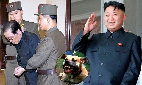 الزعيم الكوري الشمالي يرمي بعمه حيا لتفترسه 120 كلب