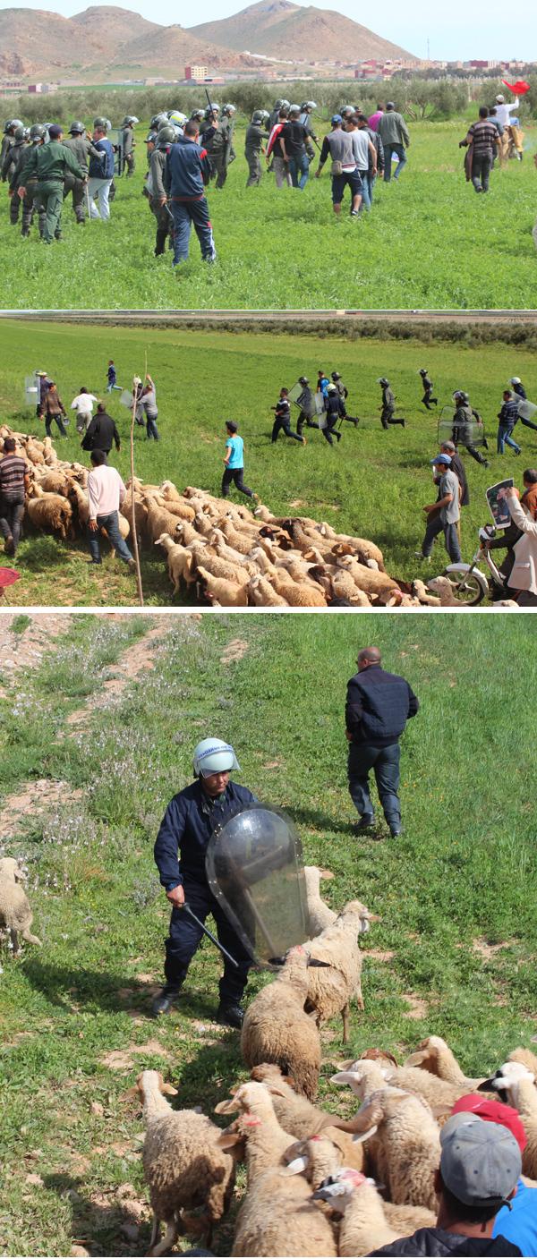 مسيرة احتجاجية ضد مقلع الصفريوي بتيزطوطين لم يشهد لها مثيل – صور و فيديو