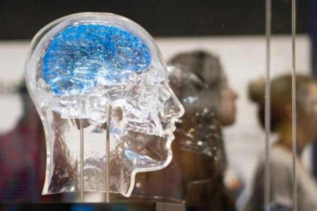 علمياً.. هكذا يقوّي الصيام قدرات الدماغ