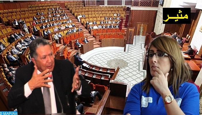 قمة الحكرة...الفاضيلي يقمع أحكيم وسط البرلمان لسبب تدخلها لمسائلة وزير الداخلية حول قضية الحراك والمعتقلين,,,إليكم التفاصيل