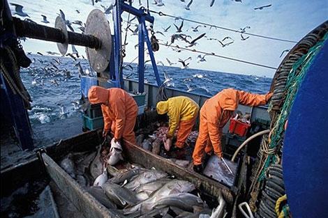 وزير دنماركي: اتفاقية الصيد البحري بين المغرب والاتحاد الأوربي تعود بالنفع على الصحراء