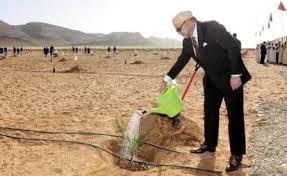 فيديو : حول مخطط المغرب الأخضر