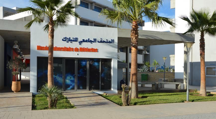 افتتاح أول متحف للنيازك بالمغرب