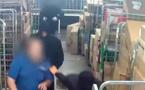 """هولندا.. عصابة مغربية تنفذ عملية سطو مسلح وتسرق 2 مليون يورو"""" فيديو"""""""