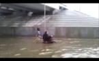 مشهد مؤثر لكلب ينقذ رجلاً يجلس على كرسي متحرك