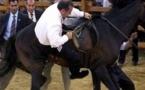 فيديو .. حصان عربي يركل أردوغان ويسقطه أرضاً