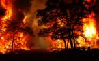 متجدد: اندلاع حريق مهول بغابة كوروكو بالناظور.. ومحاولات لإخماده